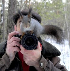 Photo Squirrel
