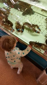 Baby with Bugs