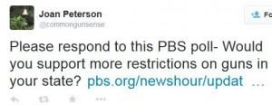 Joan Peterson PBS Survey